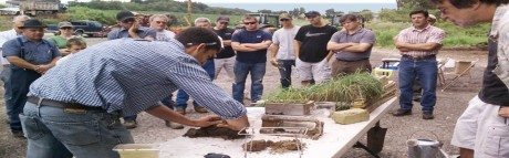 Lessons in Soil Health