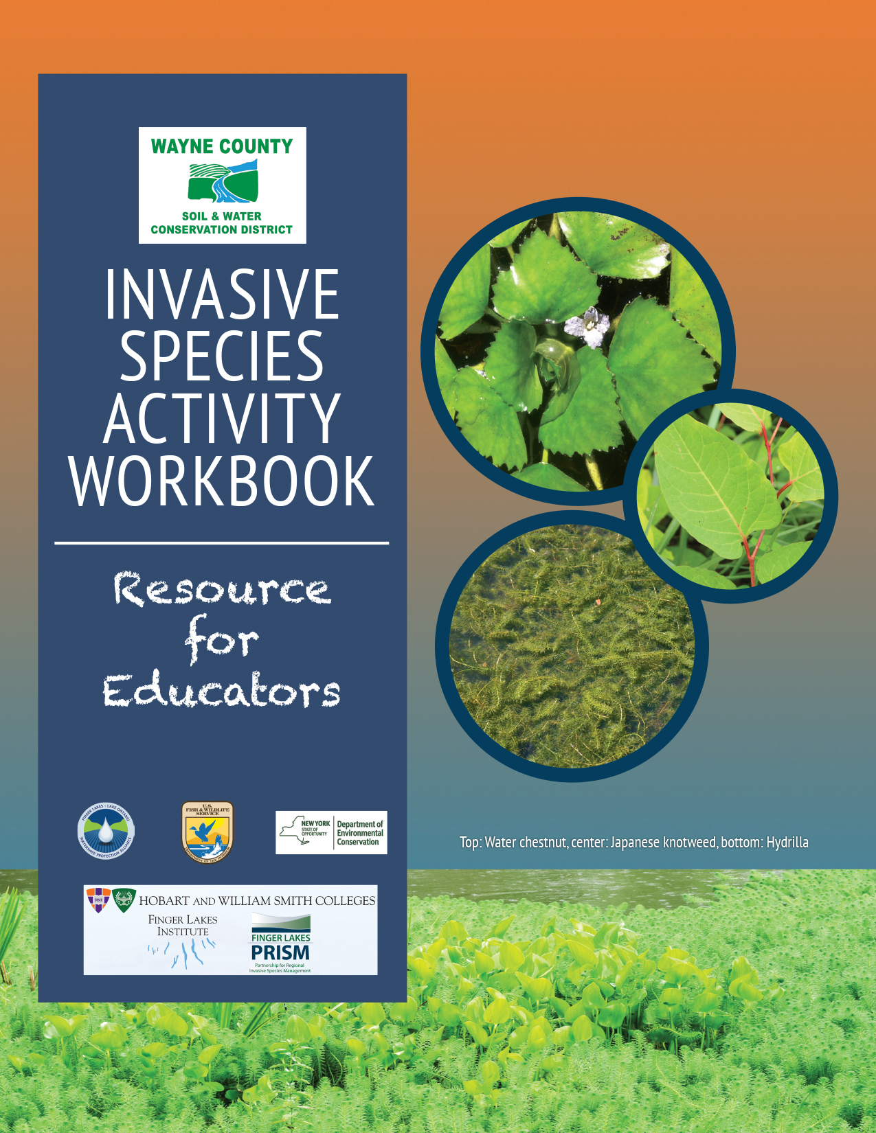 Invasive Species Activity Guide Book