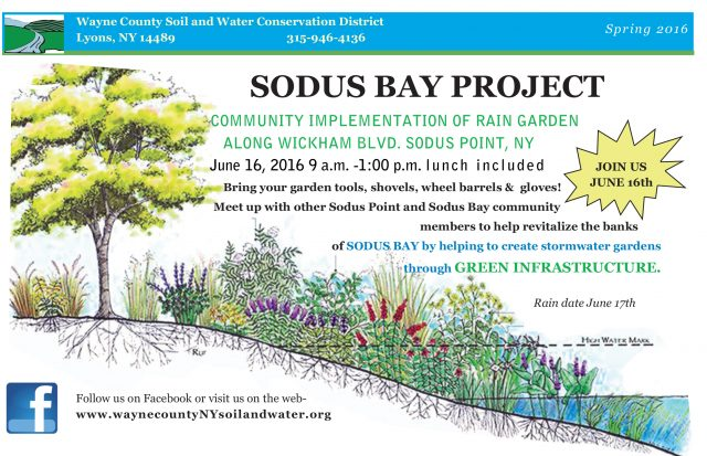 Sodus-Bay-Project