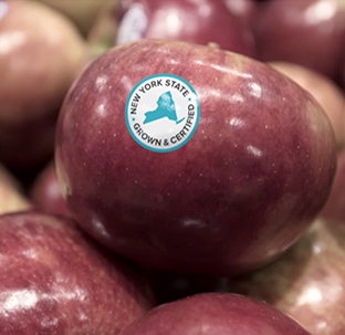A red apple adorned with the New York State Grown & Certified blue and white seal