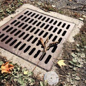 storm_drains